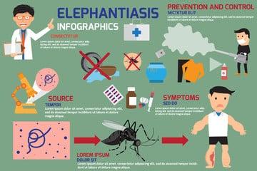 Filariasis elephantiasis inforgraphics