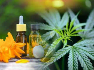 CBD Product In Your Daily Routine